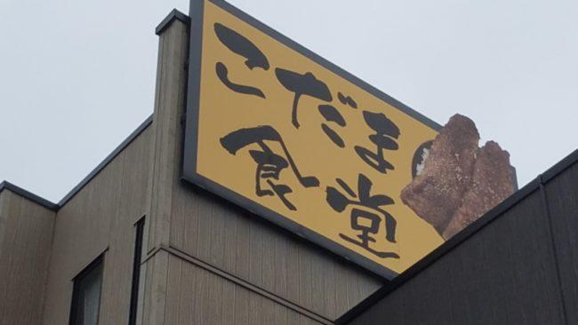 釣りとご飯で2倍満足!一度は食べたいこだま食堂のわらじかつ丼 【福井県小浜市/こだま食堂】