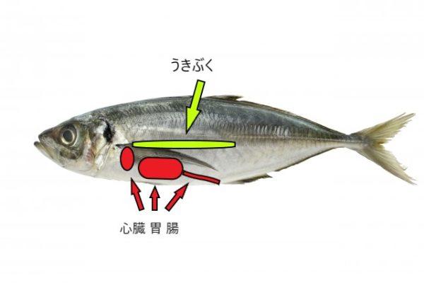 【強風時】ヤエン釣りでアジを確実に沈める!