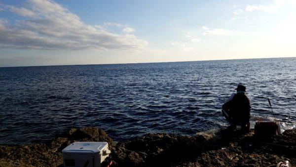 アオリイカ釣果情報 アオリイカをヤエンで釣りまくりたい!