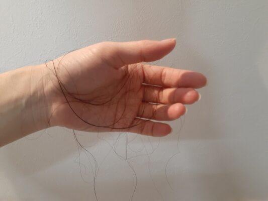 シャンプー時の抜け毛の本数の平均は?【1日】