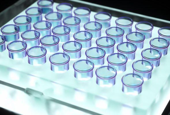 ヒト幹細胞培養液は髪が抜ける男性女性に超おすすめな育毛剤