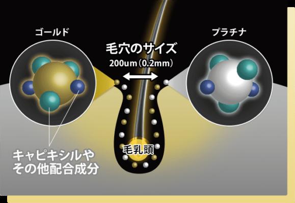 【口コミ】ザ スカルプ5.0c育毛剤浸透力