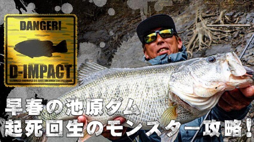 釣りビジョン 無料で視聴