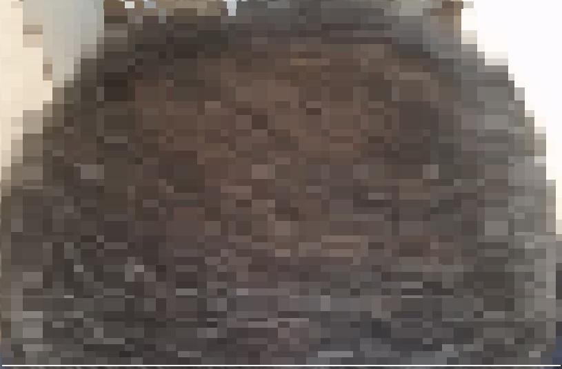 天頂部が薄毛な男性の画像