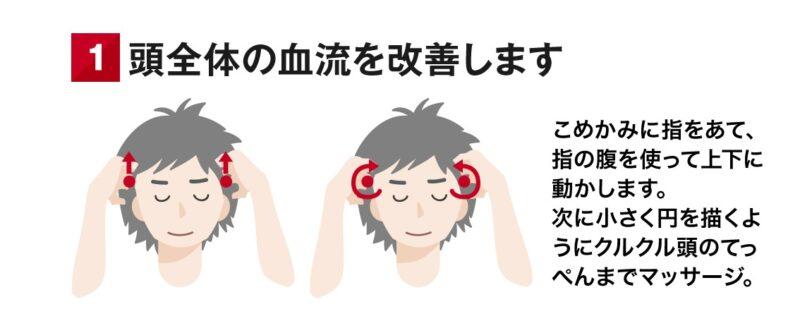 頭皮全体の血行を促進します
