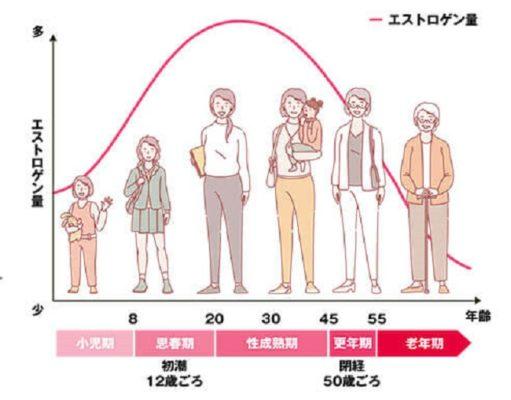 女性のホルモンバランスグラフ