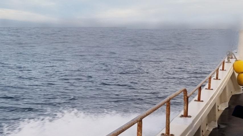 なぎ丸渡船からみた苅藻島