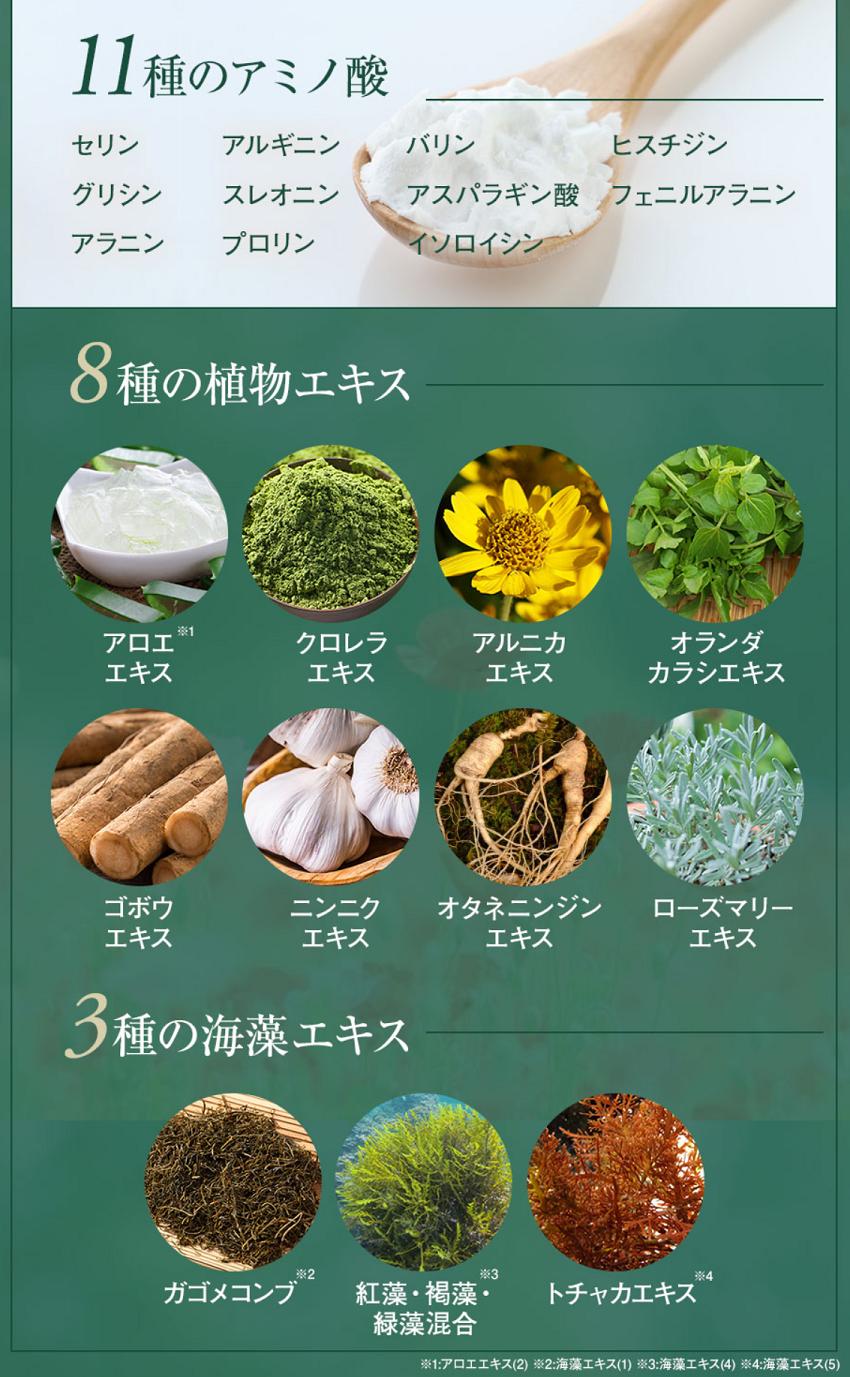 11種類のアミノ酸、8種類の植物エキス、3種類の海藻エキスが配合