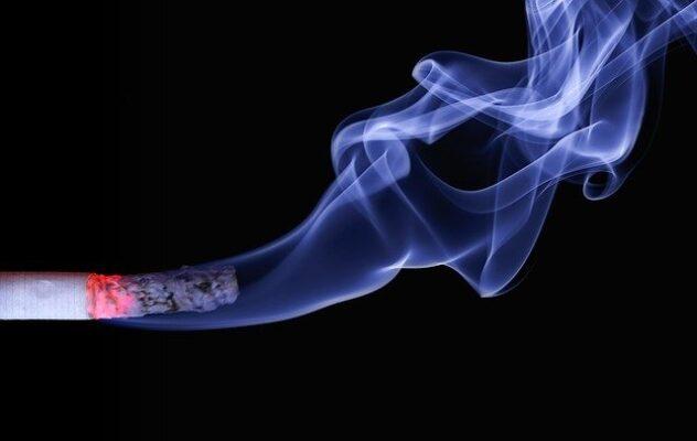 タバコに含まれているニコチンはビタミンCの吸収を阻害し、体内のビタミンC量を低下させる事を解説してる